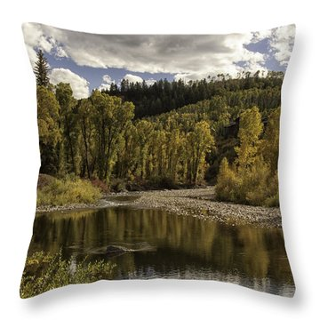 Autumn Colors At Christina Throw Pillow by Daniel Hebard