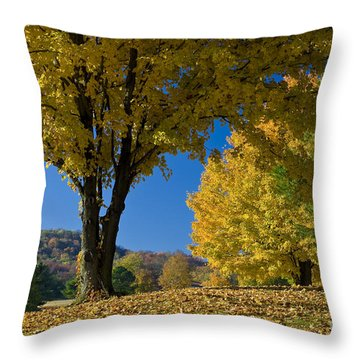 Autumn Colors Throw Pillow by Brian Jannsen