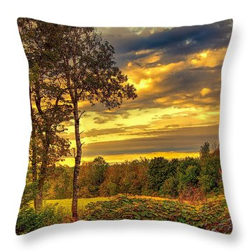 Autumn Colors Throw Pillow by Fred Larson