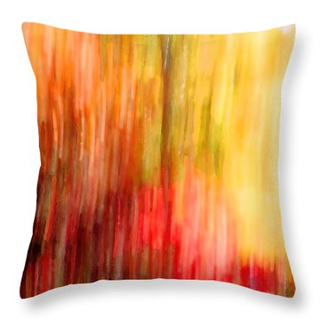 Autumn Colors In Abstract Throw Pillow