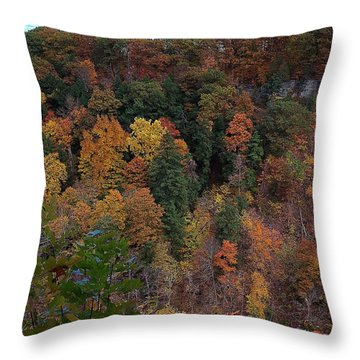Throw Pillow featuring the photograph Autumn Colors In Taughannock State Park Ithaca New York by Paul Ge