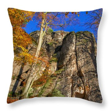 Autumn Colors In The Saxon Switzerland Throw Pillow