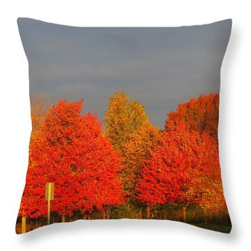 Throw Pillow featuring the photograph Autumn Colors by Jeanette Oberholtzer