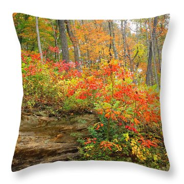 Throw Pillow featuring the photograph Autumn Colors by Lorna Rogers Photography