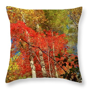 Autumn Colors Throw Pillow by Patrick Shupert