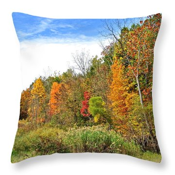 Autumn Colors Throw Pillow by Frozen in Time Fine Art Photography