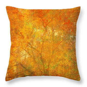 Autumn Colors Throw Pillow by Suzanne Powers