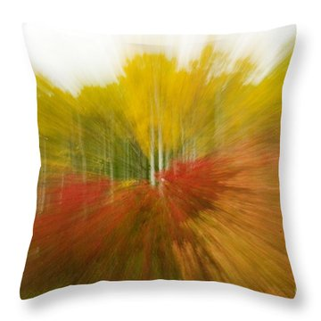 Autumn Colors Throw Pillow by Vivian Christopher
