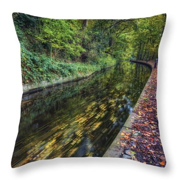 Autumn Colours Passing Throw Pillow by Ian Mitchell