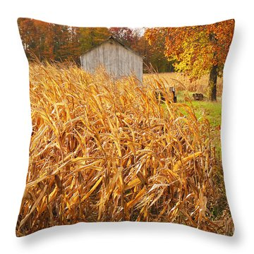 Autumn Corn Throw Pillow by Mary Carol Story