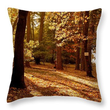 Autumn Country Lane Evening Throw Pillow by Michele Myers