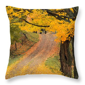 Throw Pillow featuring the photograph Autumn Country Road by Alan L Graham