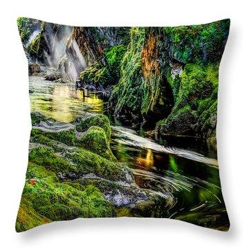 Fairy Glen Throw Pillows