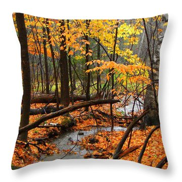Throw Pillow featuring the photograph Autumn Creek In The Rain by Rodney Lee Williams