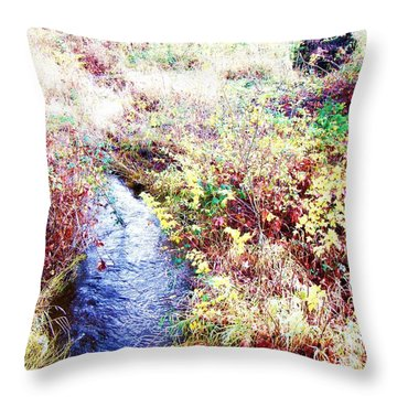 Throw Pillow featuring the photograph Autumn Creek by Vanessa Palomino