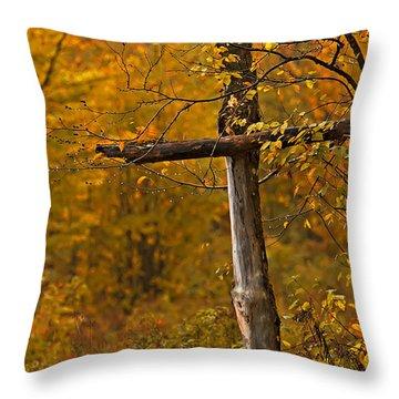 Autumn Cross Throw Pillow