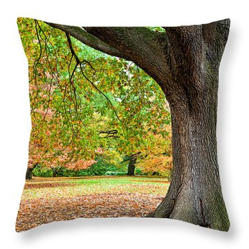 Autumn Throw Pillow by Dave Bowman