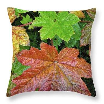 Autumn Devil's Club Throw Pillow