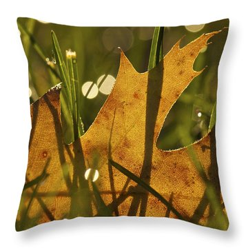 Autumn Dew Throw Pillow