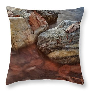 Autumn Drift Throw Pillow by Jennifer Casey