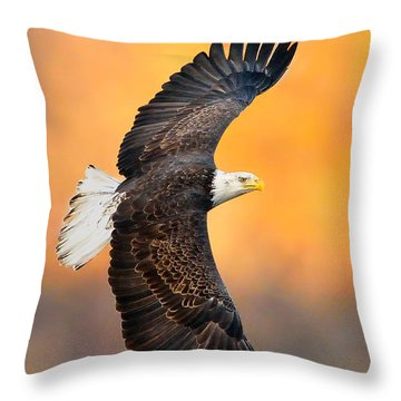 Autumn Eagle Throw Pillow
