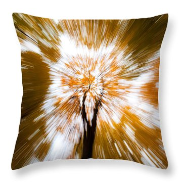 Autumn Explosion Throw Pillow by Dave Bowman
