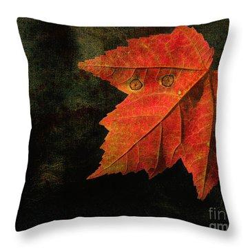 Autumn Eyes Throw Pillow by Kathi Mirto