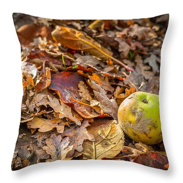 Throw Pillow featuring the photograph Autumn Fall by Gary Gillette