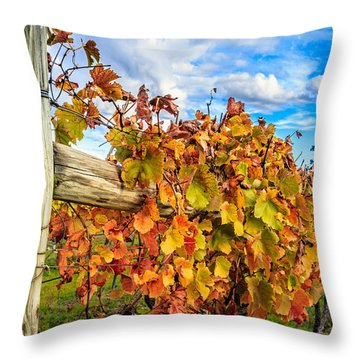 Autumn Falls At The Winery Throw Pillow by Peta Thames