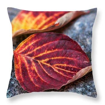 Autumn Family Tree Throw Pillow