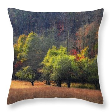 Autumn Field Throw Pillow