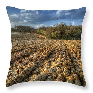 Autumn Field Throw Pillow