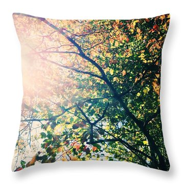 Throw Pillow featuring the photograph Autumn Flame by Kim Fearheiley