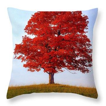 Autumn Flame Throw Pillow by Steve Harrington
