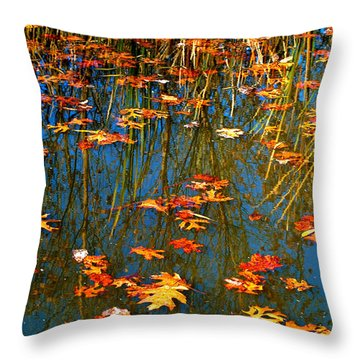 Throw Pillow featuring the photograph Autumn  Floating by Peggy Franz