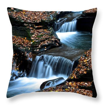 Autumn Flows Forth Throw Pillow by Frozen in Time Fine Art Photography