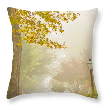 Autumn Fog Throw Pillow by Rima Biswas