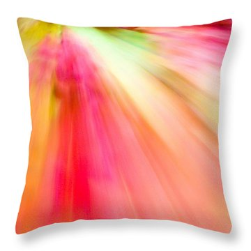 Autumn Foliage 10 Throw Pillow