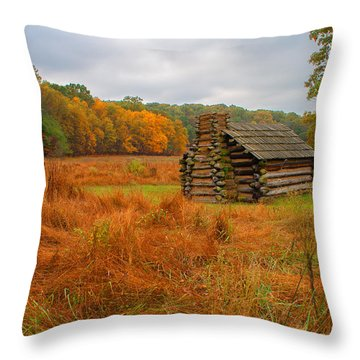 Autumn Foliage In Valley Forge Throw Pillow