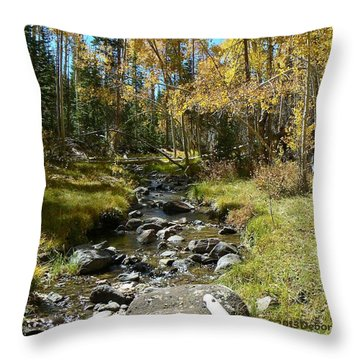 Autumn Stream Throw Pillow by Deborah Moen