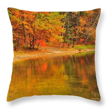 Autumn Forest Reflection Throw Pillow by Terri Gostola