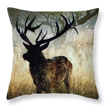 Throw Pillow featuring the photograph Autumn Forest Walk In Denmark  by Colette V Hera  Guggenheim