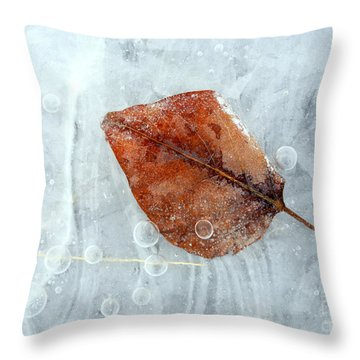 Autumn Frozen Throw Pillow