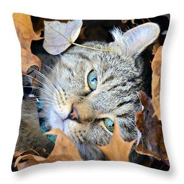 Autumn Fun Throw Pillow by Susan Leggett
