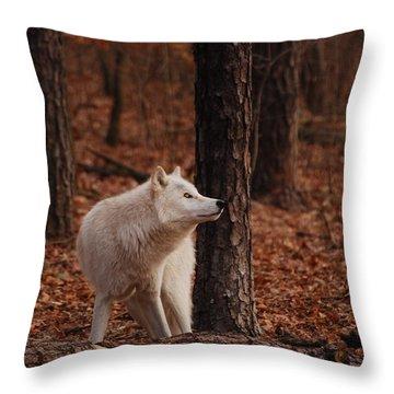 Autumn Gaze Throw Pillow