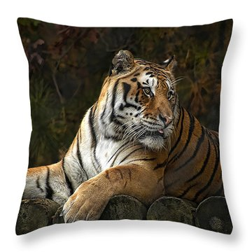 Autumn Gaze Throw Pillow