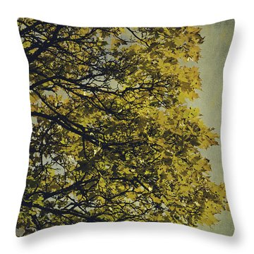 Throw Pillow featuring the photograph Autumn Glory by Ari Salmela
