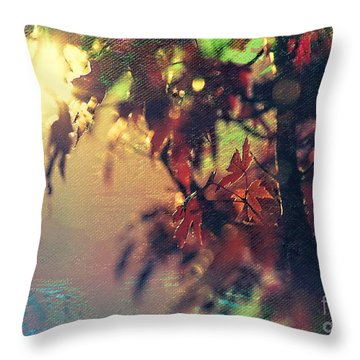Autumn Glow Throw Pillow by Billie-Jo Miller