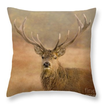 Magnificant Stag Throw Pillow