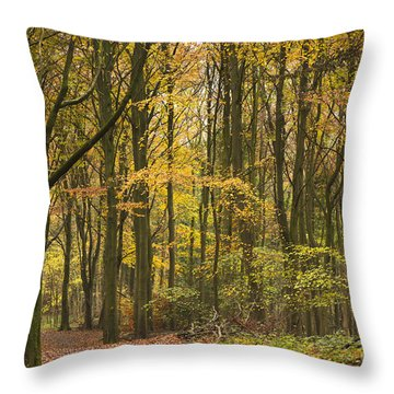 Autumn Gold Throw Pillow by Anne Gilbert